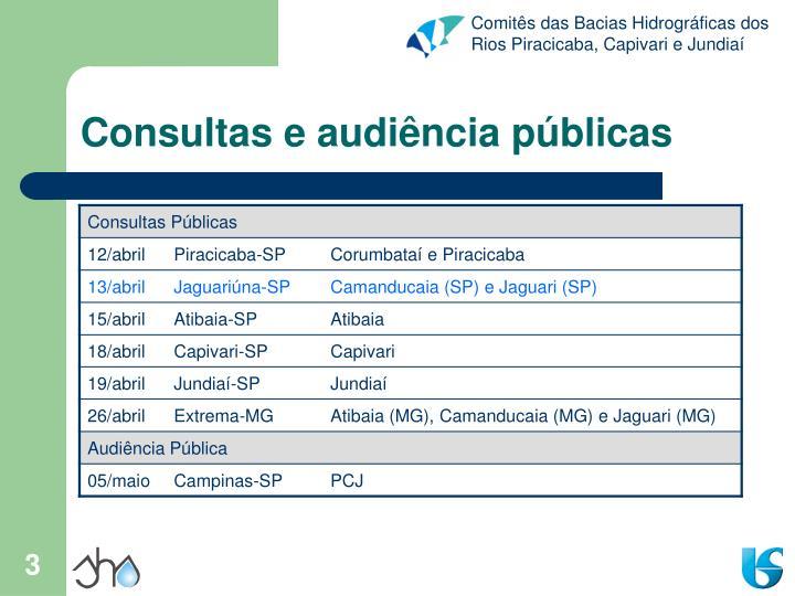 Consultas e audiência públicas