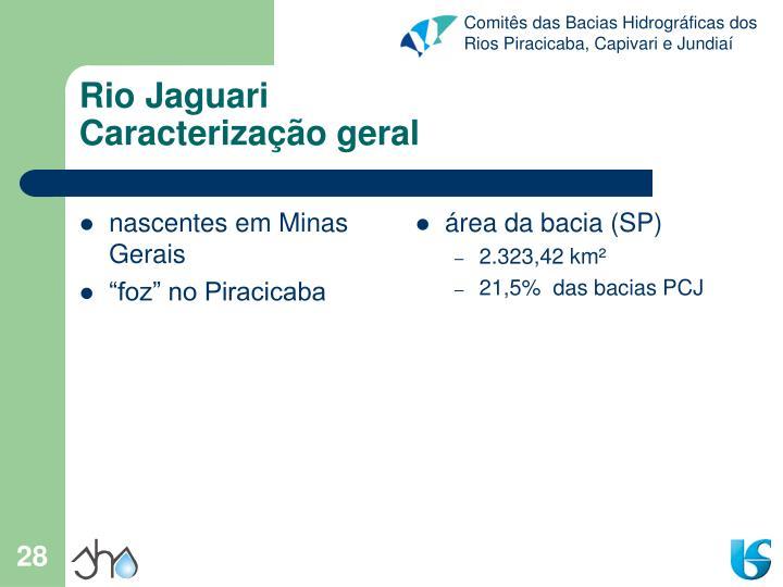 nascentes em Minas Gerais