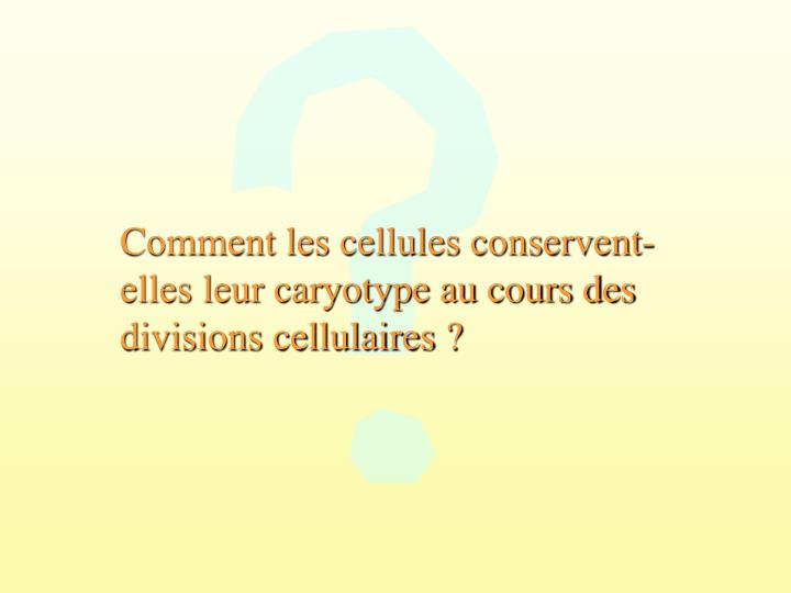 Comment les cellules conservent-elles leur caryotype au cours des divisions cellulaires ?