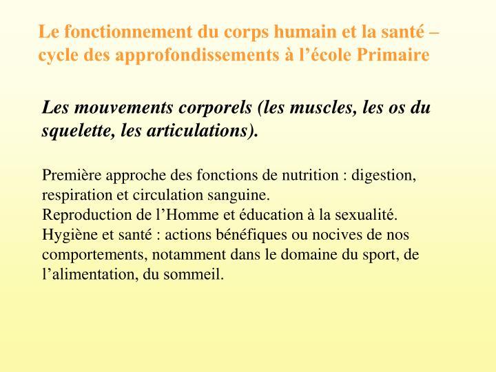 Le fonctionnement du corps humain et la sant  cycle des approfondissements  lcole Primaire
