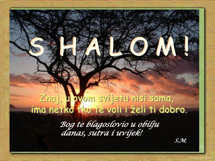 S  H A L O M !