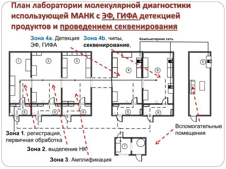 План лаборатории молекулярной диагностики