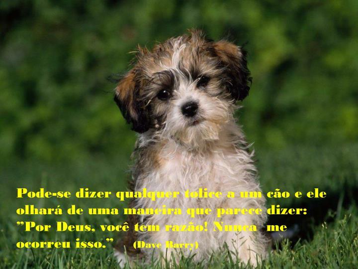 """Pode-se dizer qualquer tolice a um cão e ele  olhará de uma maneira que parece dizer: """"Por Deus, você tem razão! Nunca  me ocorreu isso."""""""