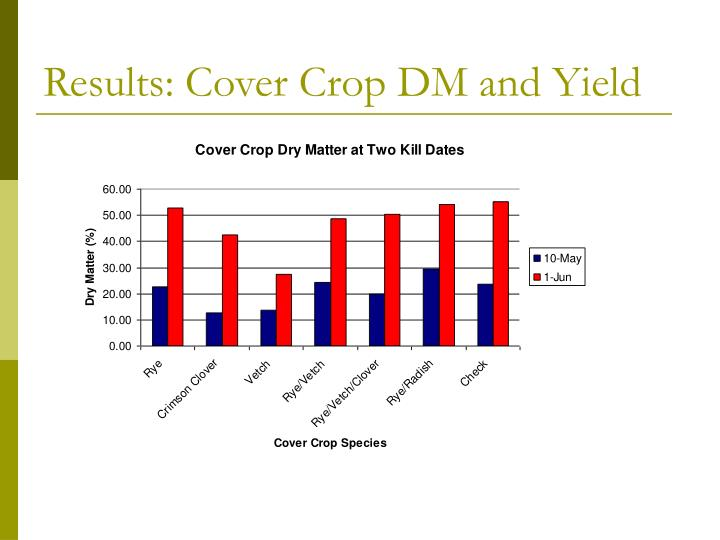 Results: Cover Crop DM and Yield