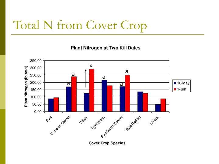 Total N from Cover Crop