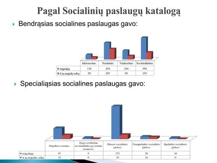 Pagal Socialinių paslaugų katalogą