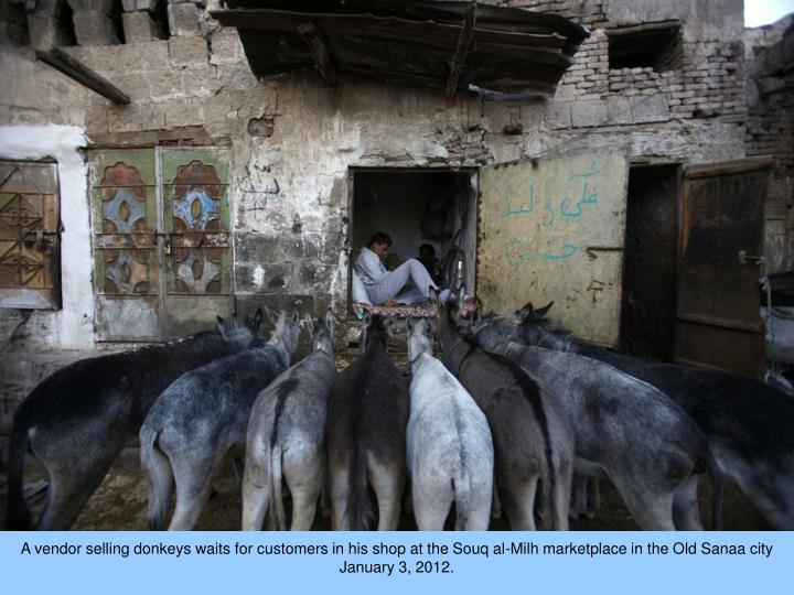 A vendor selling donkeys waits for customers in his shop at the Souq al-Milh marketplace in the Old ...