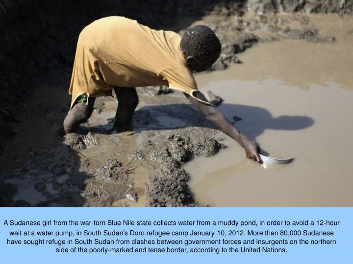 A Sudanese girl from the war-torn Blue Nile state collects water from a muddy pond, in order to avoid a 12-hour wait at a water pump, in South Sudan's Doro refugee camp January