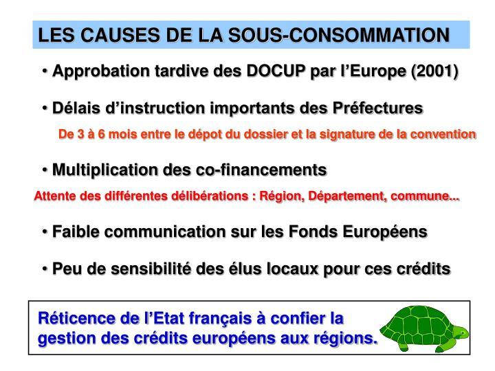 LES CAUSES DE LA SOUS-CONSOMMATION