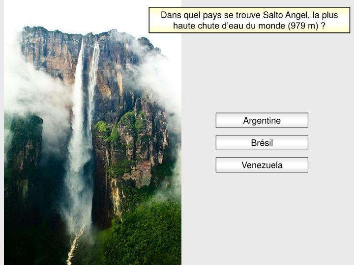 Dans quel pays se trouve Salto Angel, la plus haute chute d'eau du monde (979 m) ?