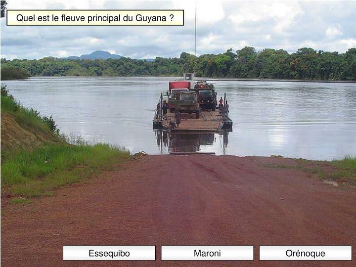 Quel est le fleuve principal du Guyana ?