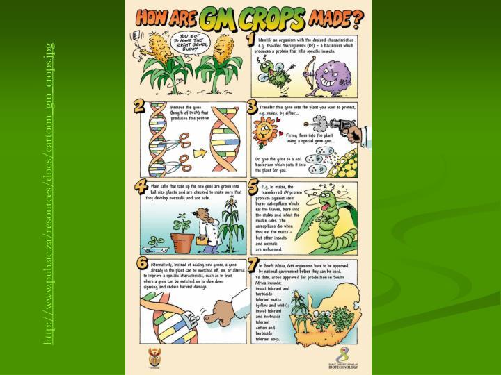 http://www.pub.ac.za/resources/docs/cartoon_gm_crops.jpg