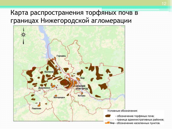Карта распространения торфяных почв в границах Нижегородской агломерации