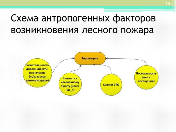 Схема антропогенных факторов возникновения лесного пожара