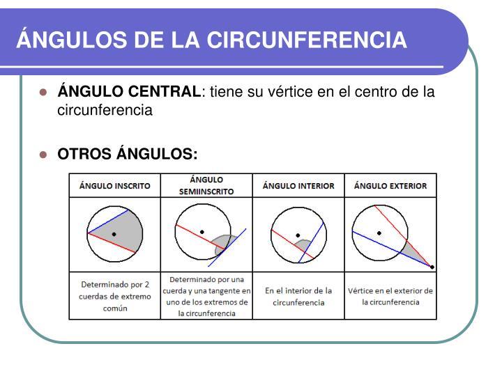 ÁNGULOS DE LA CIRCUNFERENCIA