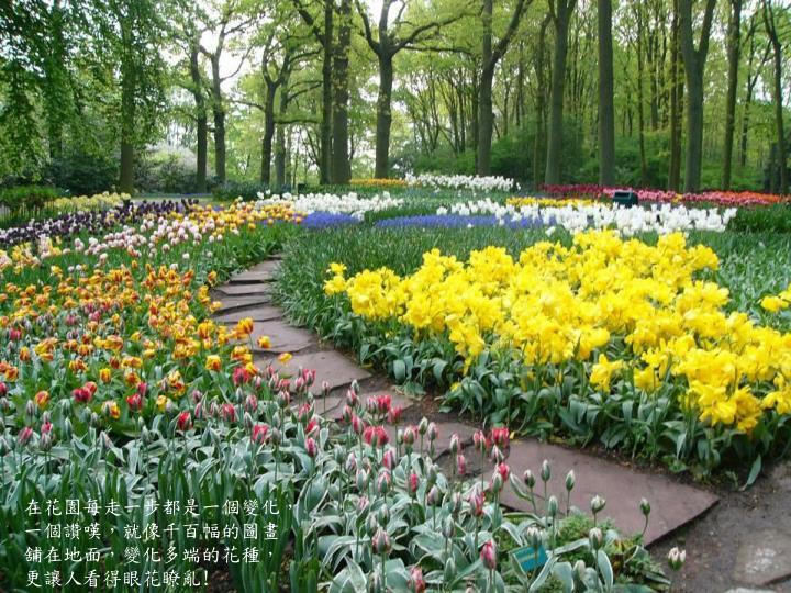 在花園每走一步都是一個變化,一個讚嘆,就像千百幅的圖畫舖在地面,變化多端的花種,更讓人看得眼花瞭亂
