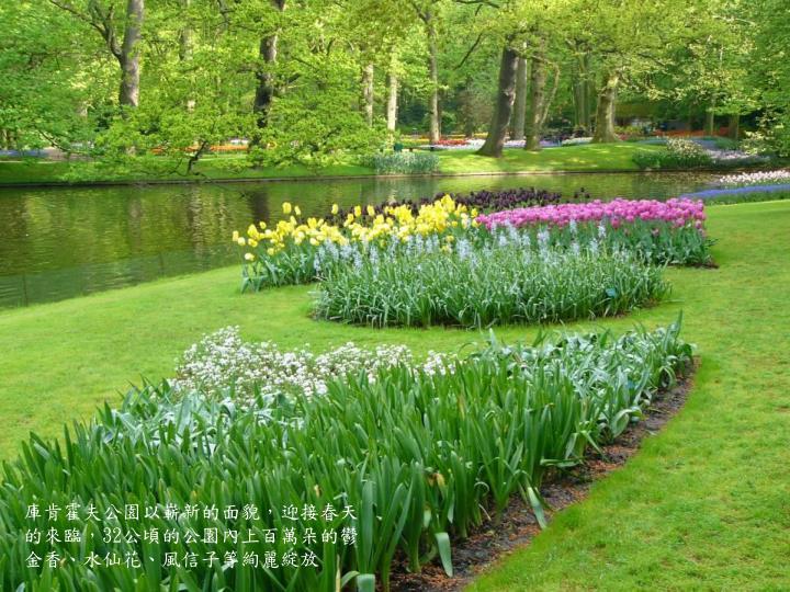 庫肯霍夫公園以嶄新的面貌,迎接春天的來臨,