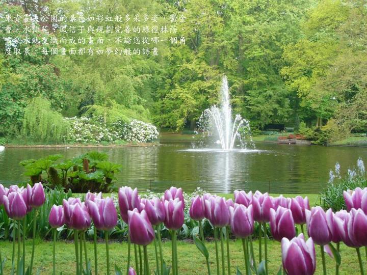 庫肯霍夫公園的景色如彩虹般多采多姿,鬱金香、水仙花、風信子與規劃完善的綠徑林蔭、噴泉水池交織而成的畫面,不論您從哪一個角度取景,每個畫面都有如夢幻般的詩畫