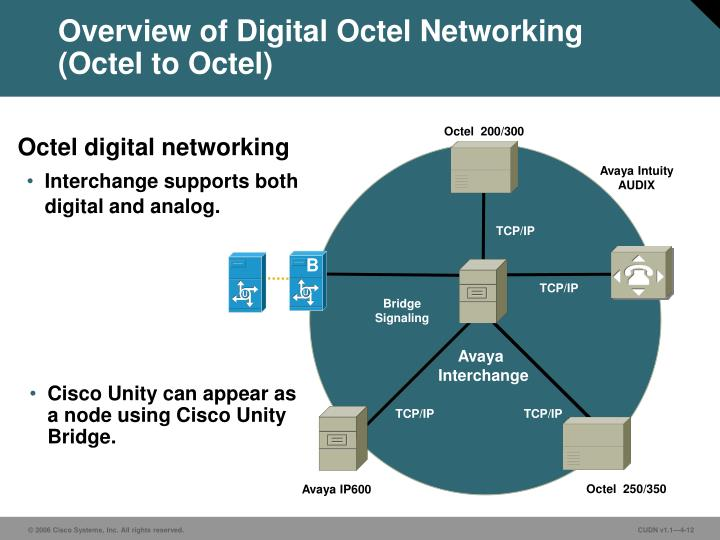 Overview of Digital Octel Networking
