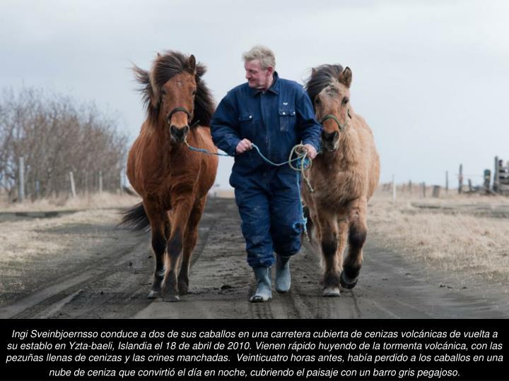 Ingi Sveinbjoernsso conduce a dos de sus caballos en una carretera cubierta de cenizas volcnicas de vuelta a su establo en Yzta-baeli, Islandia el 18 de abril de 2010. Vienen rpido huyendo de la tormenta volcnica, con las pezuas llenas de cenizas y las crines manchadas.  Veinticuatro horas antes, haba perdido a los caballos en una nube de ceniza que convirti el da en noche, cubriendo el paisaje con un barro gris pegajoso.