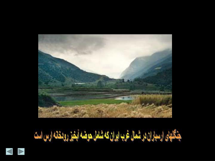 جنگلهای ارسباران در شمال غرب ایران که شامل حوضه آبخیز رودخانه ارس است