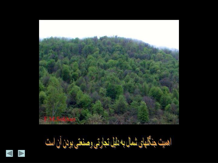 اهمیت جنگلهای شمال به دلیل تجارتی وصنعتی بودن آن است