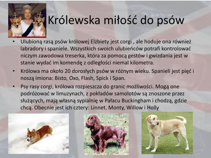 Królewska miłość do psów