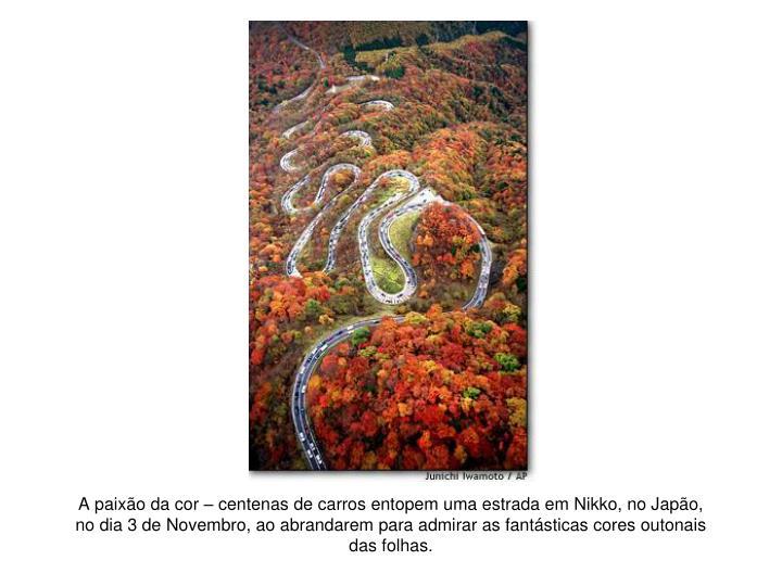 A paixão da cor – centenas de carros entopem uma estrada em Nikko, no Japão, no dia 3 de Novembro, ao abrandarem para admirar as fantásticas cores outonais das folhas.