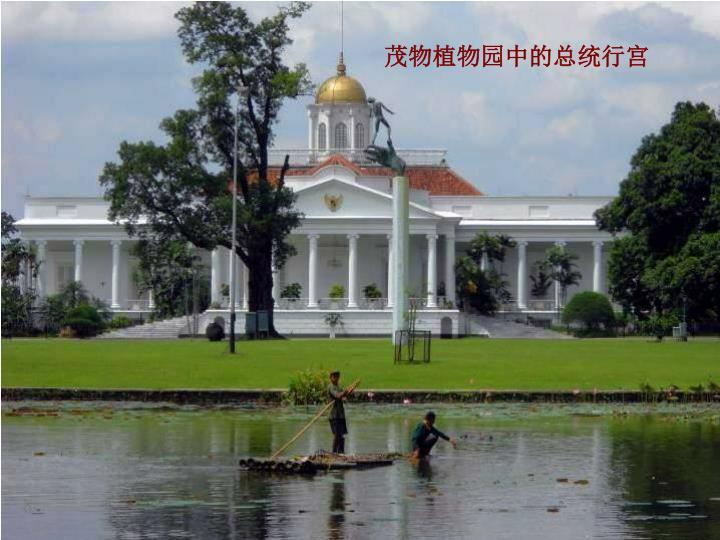 茂物植物园中的总统行宫