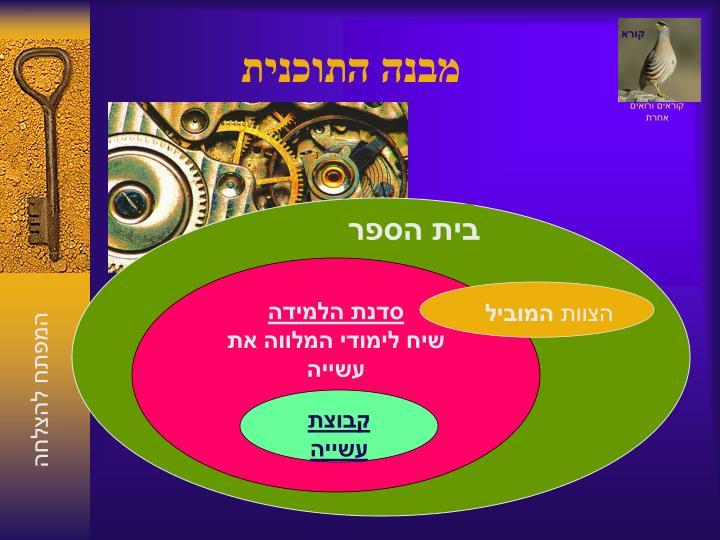 מבנה התוכנית