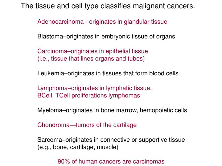 The tissue and cell type classifies malignant cancers.