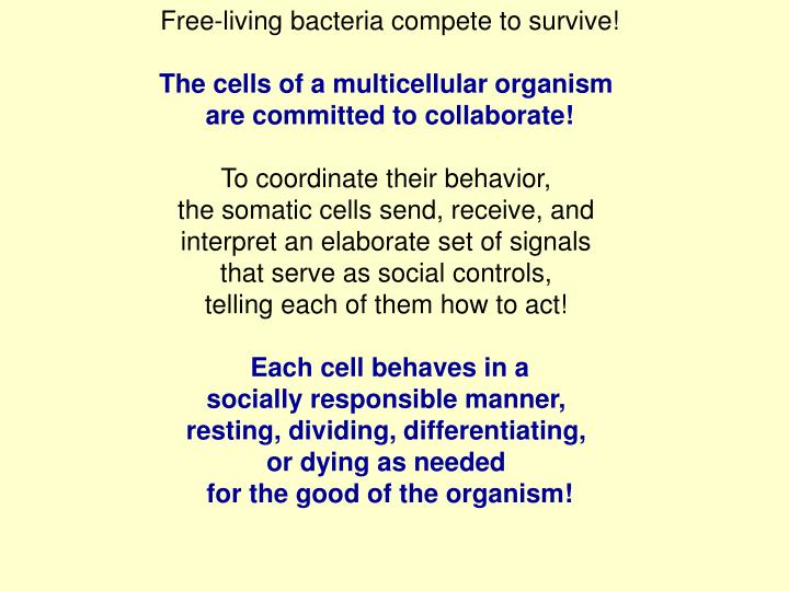 Free-living bacteria compete to survive!