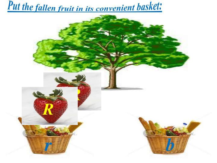 Put the fallen fruit in its convenient basket: