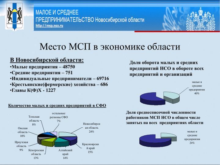 Место МСП в экономике области