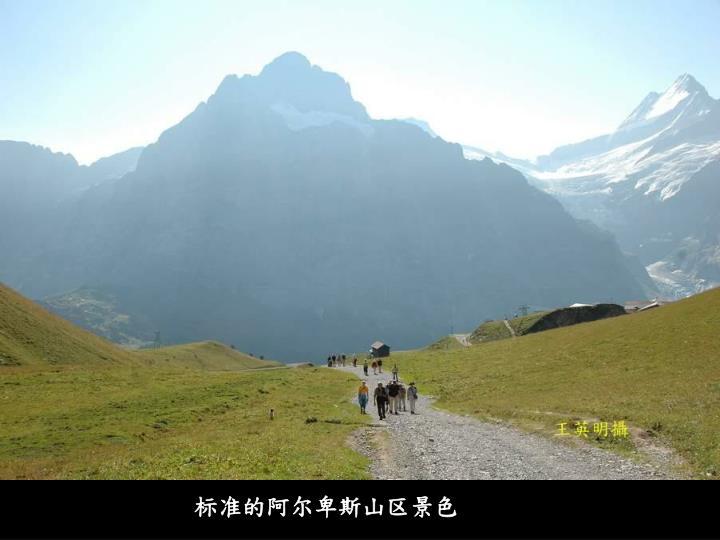 标准的阿尔卑斯山区景色