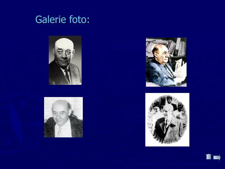 Galerie foto: