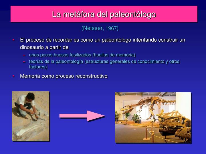 La metáfora del paleontólogo