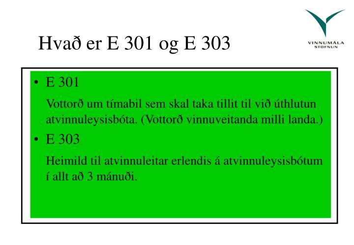 Hvað er E 301 og E 303