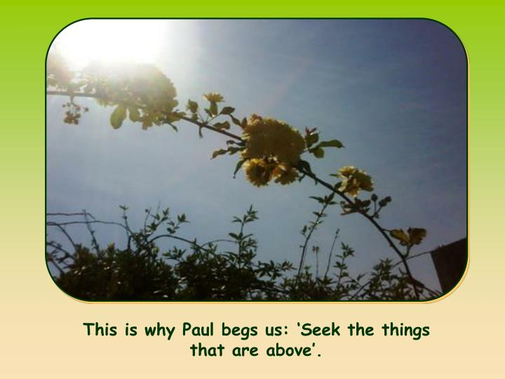 This is why Paul begs us: 'Seek the things that are above'.