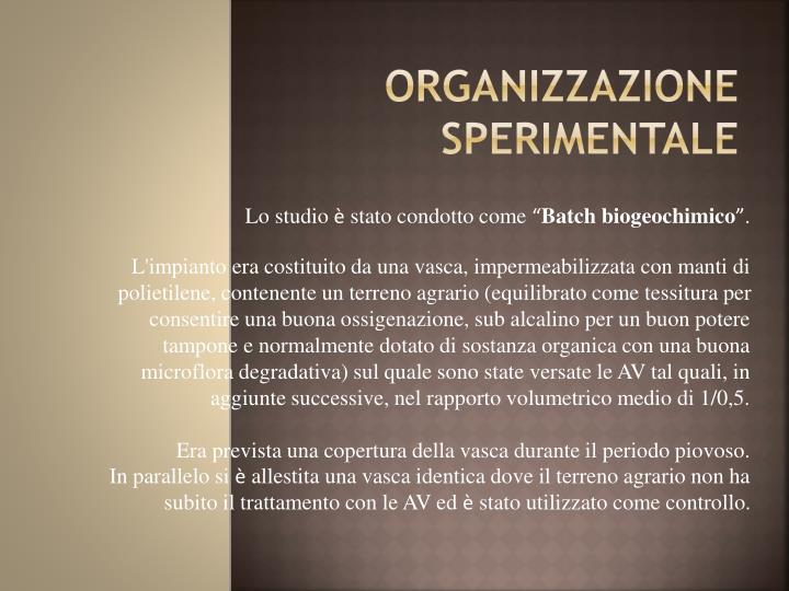 ORGANIZZAZIONE SPERIMENTALE
