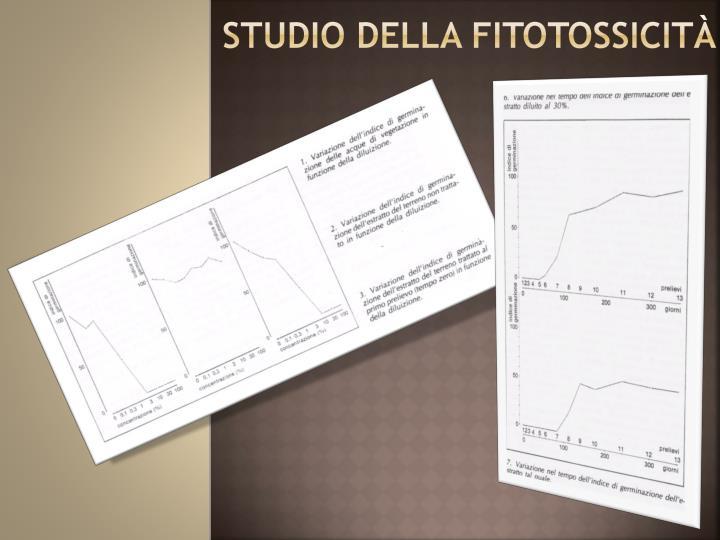STUDIO DELLA FITOTOSSICITÀ