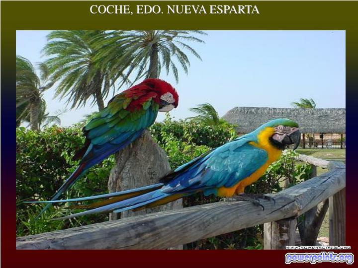 COCHE, EDO. NUEVA ESPARTA