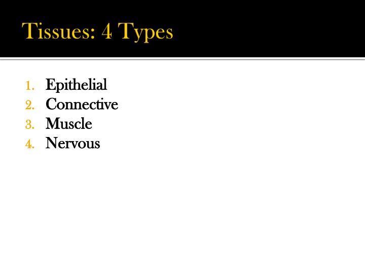 Tissues: 4 Types