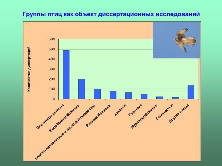 Группы птиц как объект диссертационных исследований