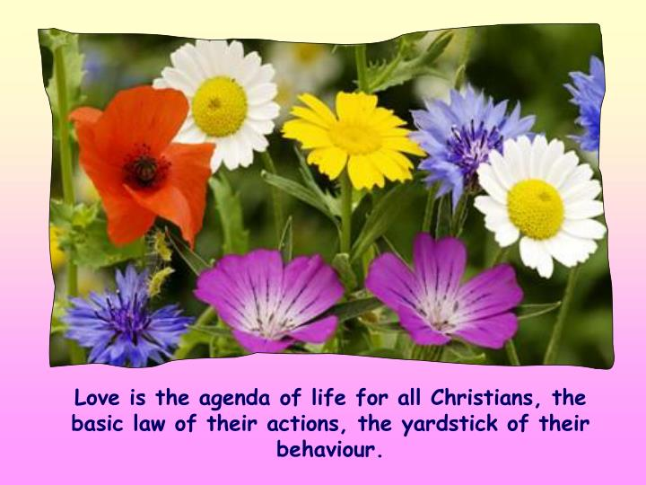 Love is the agenda of life for all Christians, the basic law of their actions, the yardstick of their behaviour.