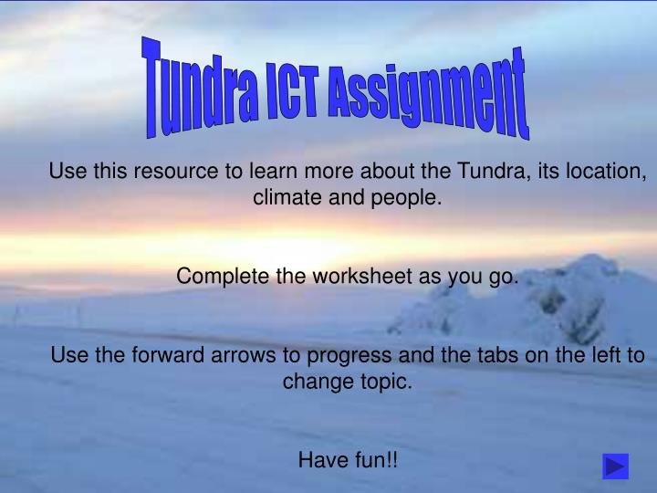 Tundra ICT Assignment