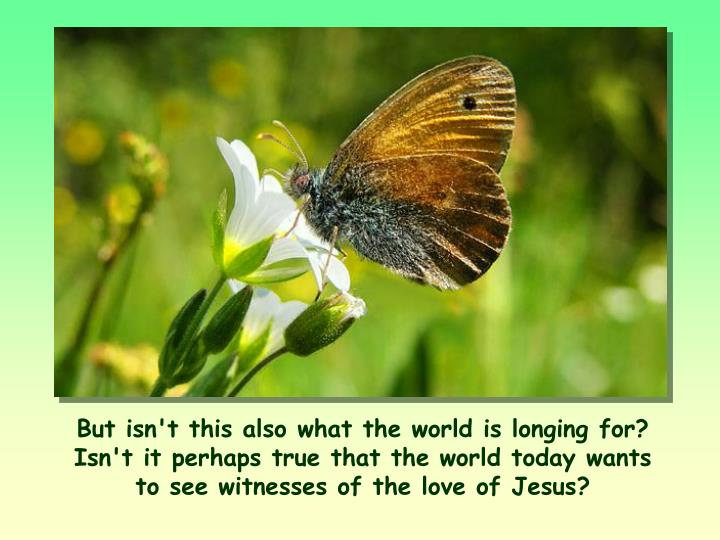 But isn't this also what the world is longing for? Isn't it perhaps true that the world today wants to see witnesses of the love of Jesus?