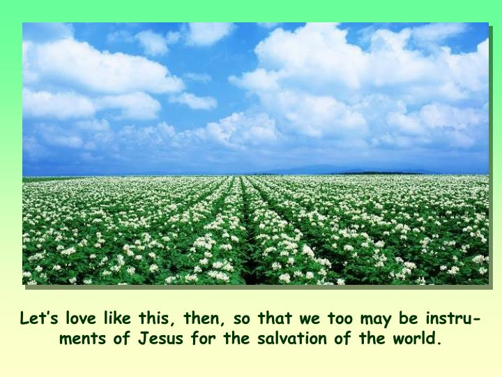 Let's love like this, then, so that we too may be instru­ments of Jesus for the salva­tion of the world.