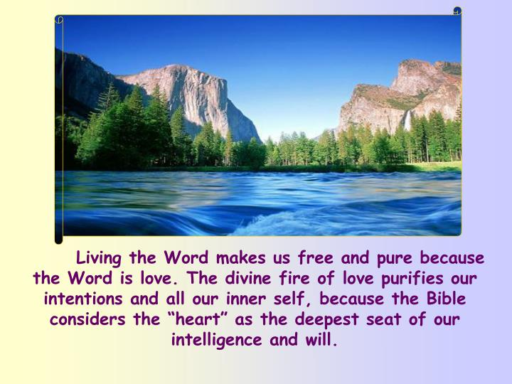 "Living the Word makes us free and pure because the Word is love. The divine fire of love purifies our intentions and all our inner self, because the Bible considers the ""heart"" as the deepest seat of our intelligence and will."