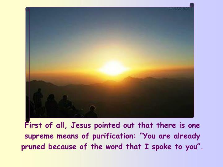 "First of all, Jesus pointed out that there is one supreme means of purification: ""You are already pruned because of the word that I spoke to you""."